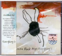 Nine Black Alps ‎– Everything Is